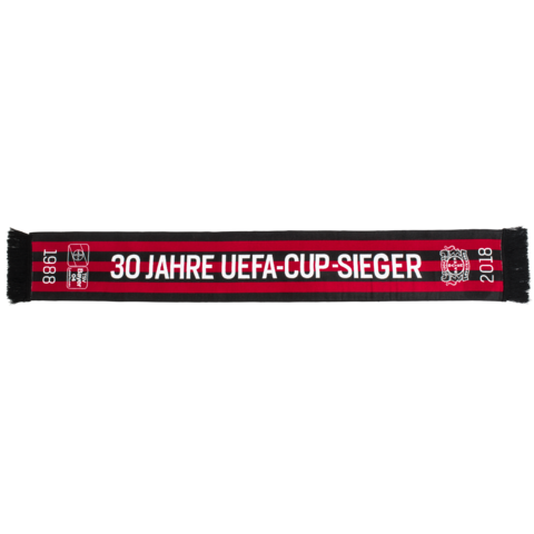 https://b04-ep-media-prod.azureedge.net/pickerimages-shop/10-0216-00-Schal_30Jahre_UEFA-Cup-Sieger_Front_18-05_115970_M.png