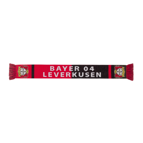 https://b04-ep-media-prod.azureedge.net/pickerimages-shop/10-0218-00-Schal_Bayer_04_Leverkusen_Front_18-07_freigestellt_120891_M.png